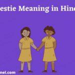 Besties का मतलब क्या होता है ? Bestie Meaning in Hindi