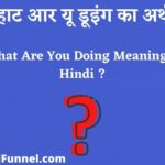 What Are You Doing In Hindi - व्हाट आर यू डूइंग का अर्थ