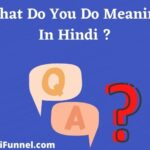 व्हाट डू यू डू का मतलब क्या होता है - What Do You Do Meaning In Hindi ?