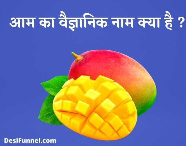 आम का वैज्ञानिक नाम क्या है, Mango Ka Scientific Name Kya Hai ?