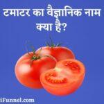 टमाटर का वैज्ञानिक नाम क्या है? - Tamatar (Tomato) Ka Scientific Naam